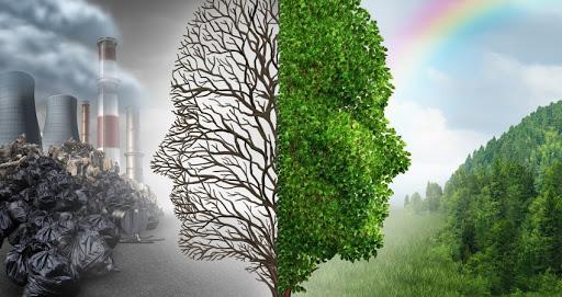 نابودی محیط زیست