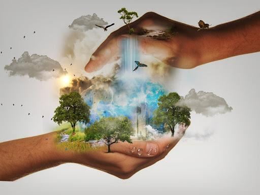 چه عواملی محیط زیست را تهدید می کند؟