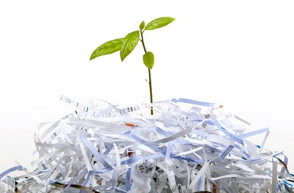 تاثیر استفاده از کاغذ در محیط زیست